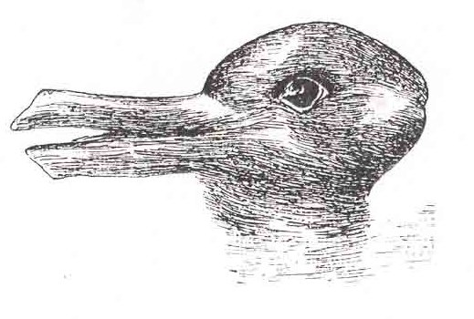 Post image for Duck/Rabbit Illusion Provides a Simple Test of Creativity