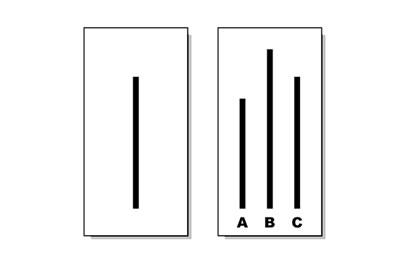 Asch Lines
