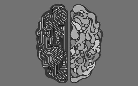 bigger brain