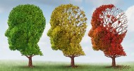2 Natural Supplements Together Halves Risk of Mild Cognitive Impairment Becoming Alzheimer's