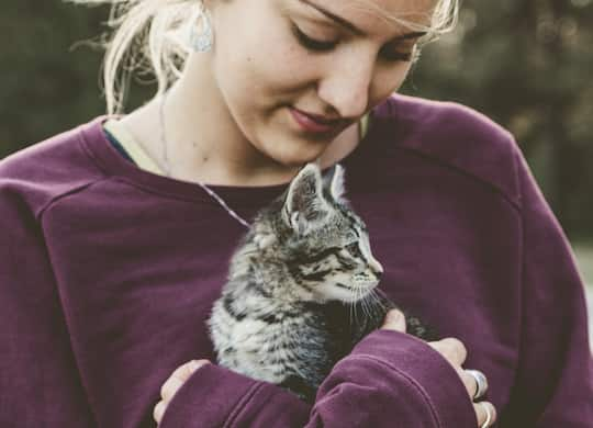 The Animals That Benefit Mental Health (M) post image