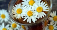 Study: 4 Herbs That Influence Both Mood And Memory