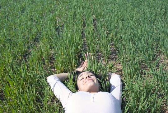 The Vitamin That Helps People Recall Their Dreams (S) post image