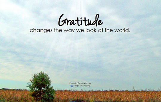 10 Ways Gratitude Can Change Your Life & 4 Step Gratitude Plan
