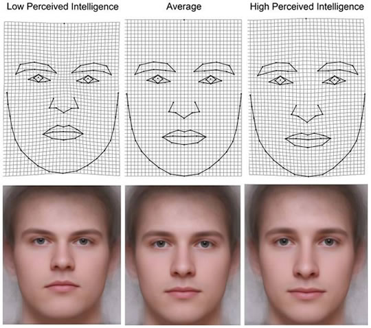 Facial features characteristics