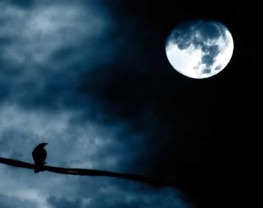 Bad Night's Sleep? Blame the Full Moon post image