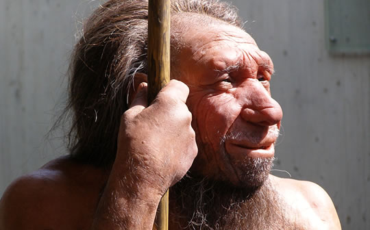 Post image for Origins of Language: Neanderthals May Have Been Able to Talk