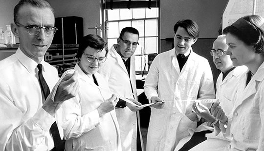 Why Do Scientists Wear White Lab Coats | Down Coat