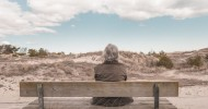 The Lifestyle That Is Best For The Aging Brain