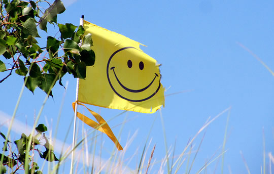 2 Personality Traits That Predict Happiness post image