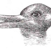 Thumbnail image for Duck/Rabbit Illusion Provides a Simple Test of Creativity