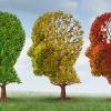 Thumbnail image for 2 Natural Supplements Together Halves Risk of Mild Cognitive Impairment Becoming Alzheimer's