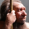 Thumbnail image for Origins of Language: Neanderthals May Have Been Able to Talk