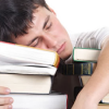 Thumbnail image for You Can Learn a New Language While You Sleep, Study Finds